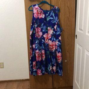 DressBarn dress size 24
